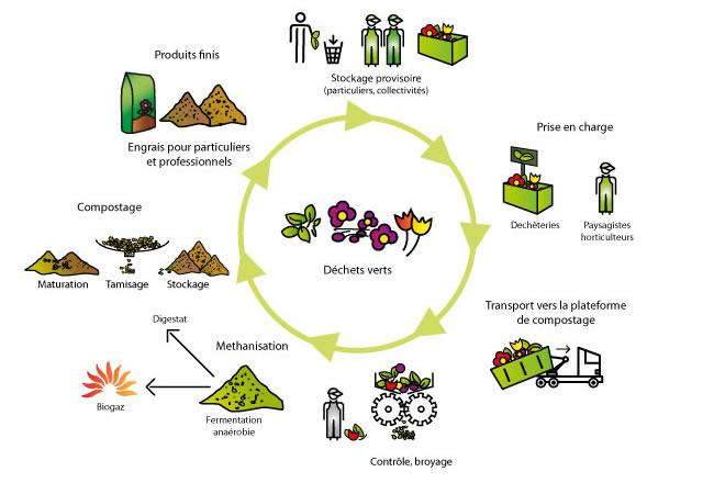 Le tri du dechets vert pictures for Les pachas du canape vert